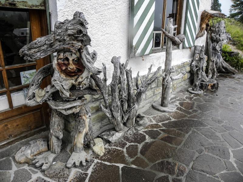 31 vÁadepr°tomnā samorastovā sochy