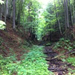 Dolina Chitrô